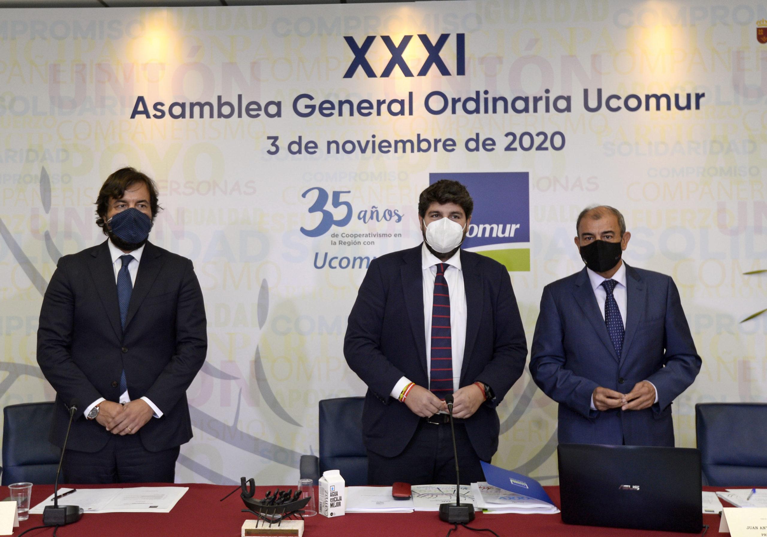 El pasado 3 de noviembre de 2020 tuvo lugar la celebración de la XXXI asamblea general ordinaria de la Unión de Cooperativas de Trabajo Asociado de la Región de Murcia.