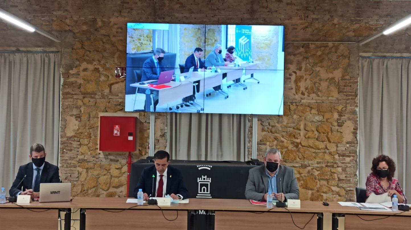 consejo territorial empleo Ayuntamiento de Murcia